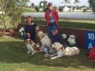 The Skyland Farm team