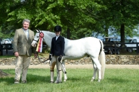 Wink And Smile at Upperville