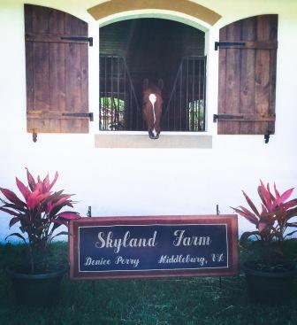 Skyland Welcome